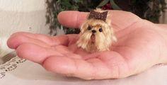 miniature Yorkie #3 doll house size