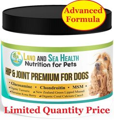 Hip and Joint Premium for Dogs *** Trust me, this is great! Click the image. : Dog Health Supplies