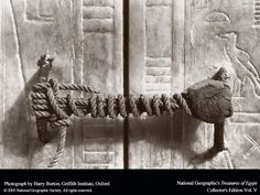 The unbroken seal of King Tut's tomb when discovered.