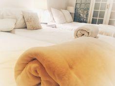 Eine tolle Übernachtung in Kapstadt: Ashby Manor Guest House #Kapstadt #CapeTown #Südafrika #Rundreise #traveljunkies