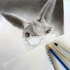 pencil drawing Kangaroo - step 1