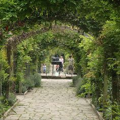 Sexby Garden features among the Secret Parks of London | Peckham Rye | Buzzfeed