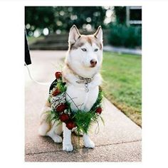 """I take this role very seriously."" 