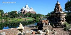 Guests who visit Walt Disney World love to spend time in Disney's Animal Kingdom enjoying the beautiful scenery and wonderful attractions. The park aims to bring guests deep into the heart of nature and the environment in a celebration that hopes to teach about the importance of conservation and pre