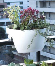 ¡Optimiza el espacio de tu balcón!  Prueba con estas macetas que se cuelgan en la baranda y arma tu jardín perfecto.  #MiJardinPerfecto #Primavera  #Deco #Terraza # #Hogar #easychile #easytienda #easy #Concurso #Jardín #Huerto #Orgánico