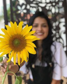@maathbittencourt fotos tumblr em viagem, foto com girassol, sunflower girasole feed amarelo