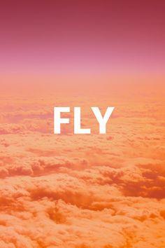 Fly, Fly, Fly