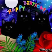 birthday cats - Google Search