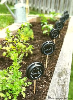 How to Use Plant Labels to Keep Your Garden Organized (and 10 DIY Plant Marker Ideas)