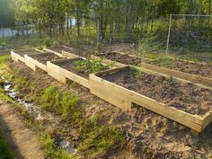 Raised beds on a slope. If we did a walkway in-between. I think this would have nice curb appeal.