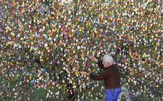 This man hangs eggs from his apple tree every year, each year adding more.  This year, he said he was done - stopping at 10,000.  Each egg is real, blown out & handpainted.