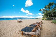 Low Airfare to Maui