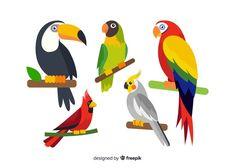 Collection of flat exotic bird Free Vector Colorful Parrots, Colorful Birds, Tropical Birds, Exotic Birds, Parrot Cartoon, Bird Barn, Barn Owls, Inkscape Tutorials, Funny Parrots