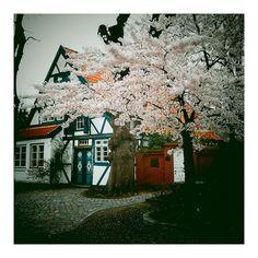Wedel (Germany)