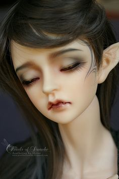 Ball Jointed Doll (BJD)