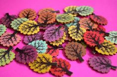 Wooden Tree Buttons Mixed 32x24mm Woodland (T2) £0.60