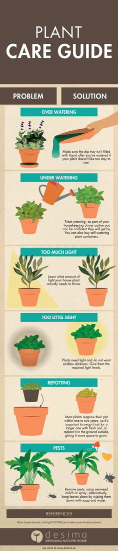 Use this guide below for basic plant care. If you are just starting out, simply follow these handy tips. Get yourself on the path of having healthy and bountiful plants. Plants for eating and plants that are beauty to the eye. Learn how to read your plant. It will tell you what's wrong and what it needs. Simply observe and act! Cheers!