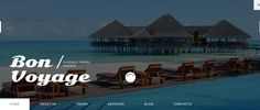 Travel Operator WordPress Theme
