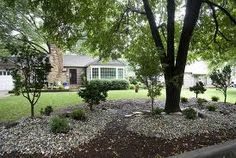 1000 images about under trees on pinterest landscaping for Landscaping rocks under trees