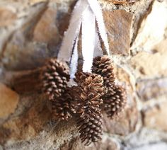 hang pine cones from the trees