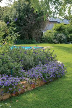 An old garden belonging to a house undergoing a renovation, and similarly in need of an update. The revamp of the garden had much to do about connecting the hou Garden Types, Public Garden, Cape Town, Stepping Stones, Architects, Entrance, Beds, Swimming Pools, Pergola