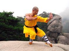 shaolin kung fu stances | base gato kung fu garra de águia cat stance perna vazia postura kung ...