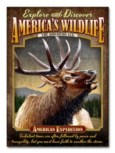 American Expedition Embossed Tin Cabin Signs (American Elk) American Expedition http://www.amazon.com/dp/B00HQMEBGE/ref=cm_sw_r_pi_dp_LMS6ub0AYMZGP