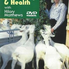 #goatvet likes the CAE recommendations in this DVD on Goat Husbandry - make sure you see the CAE testing paperwork of the herd of any goat you buy.