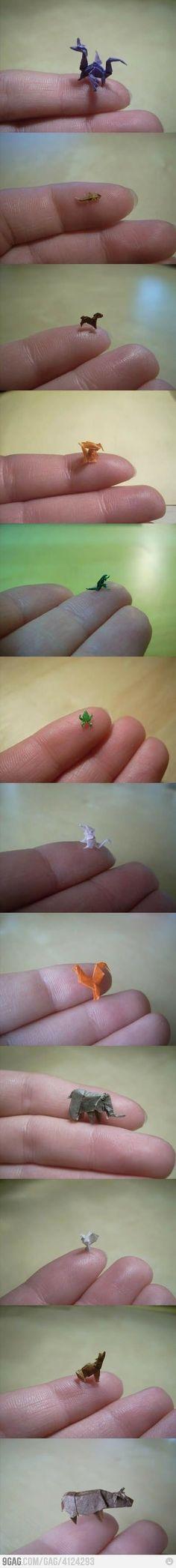 Origami lvl: expert.