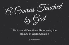 A Canvas Touched by God - Photos and Devoitions showcasing the Beauty of God's Creation. You can be apart of the launch team! Gods Creation, Book Signing, Book Publishing, Writing A Book, Word Of God, Encouragement, Social Media, Reading, Canvas