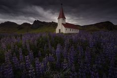 Hidden Beliefs - Image taken during my trip in the summer of 2016 to Iceland to know the entire island. The photo was made in the well-known church of Vik taking advantage of the flowering of the lupine and the magnificent sky that was shown before a hard storm  You can see more work on my photographs and trips on the following social networks  Facebook: https://www.facebook.com/HugoVallePerezFotografia/?ref=aymt_homepage_panel  Instagram: https://www.instagram.com/hugovp/  Filckr…