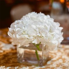Create your free Wedding Website with over 160 customizable designs. White Hydrangea Centerpieces, Hydrangea Bouquet, White Centerpiece, Simple Centerpieces, Wedding Centerpieces, Wedding Table, Wedding Decorations, Wedding Ideas, Centrepieces