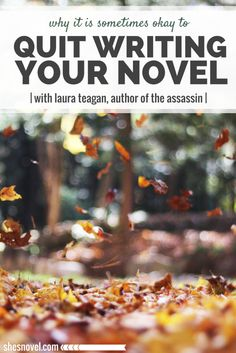 October's Featured Novel Lady is Laura Teagan, author of the upcoming mystery novel The Assassin. Click through to learn more about her novel, her writing process, and why she believes that it's sometimes okay to quit writing your novel. ShesNovel.com