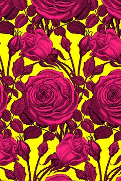 Perle des Jardins ~ Black and Courtesan ~ An antique illustration of a Perle des Jardins rose has been intertwined upon itself into a romantic bouquet. Available in fabric, wallpaper, and gift wrap.