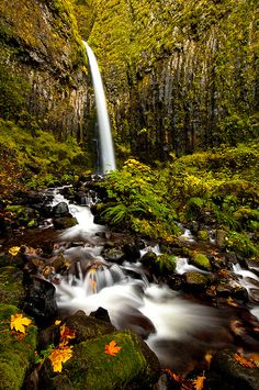 BEAUTIFUL! ツWe❤2share @Grenlist.com Classifieds.com Classifieds ══► Dry Creek falls, Oregon