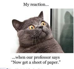 surprised #cat (via We need more fun for our boring life   TheFailBlog.org)