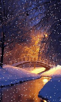Download Animated 480x800 «Winter bridge» Cell Phone Wallpaper. Category: Nature