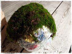 Heute war ich im Wald, habe schnell noch etwas Moos geholt und zeige euch hier, wie ich die Mooskugeln mache.  Da ich sehr große machen möch... Christmas Deco, Xmas, Garden Trellis, Plants, Inspiration, Home Decor, Wreaths, Decoration, Sweet