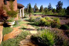 Mediterranean Landscape Tuscan Style Design, Pictures, Remodel, Decor and Ideas - page 24 High Desert Landscaping, Home Landscaping, Front Yard Landscaping, Spring Landscape, Landscape Design, Desert Landscape, Italian Garden, Tuscan Style, Garden Styles