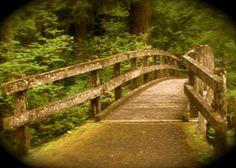 The bridge - Silver Falls