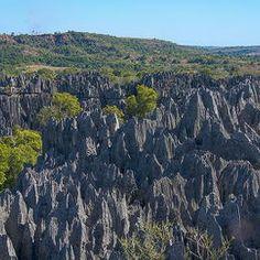 #122 Tsingy de Bemaraha Strict Nature  Reserve, Madagascar