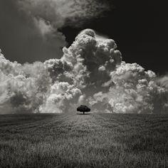 Huge Storm, Little Tree // Carlos Gotay