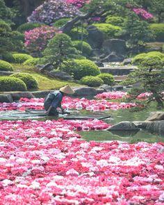 Yuushien Garden, Matsue, Shimane, Japan, 由志園, 島根県松江市, 日本
