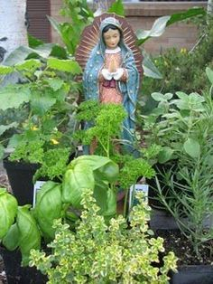 Recipes for May ~ Month Dedicated to the Blessed Virgin Mary