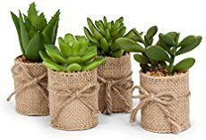 Set of 4 artificial succulents wrapped in burlap. Add these stylish items to your everyday decor or arrange them as part of your tablescape. assorted artificial mini succulents H set of 4 Tin Can Crafts, Diy Home Crafts, Jute Crafts, Succulent Arrangements, Planting Succulents, Succulent Ideas, Succulent Favors, Potted Plants, Garden Plants