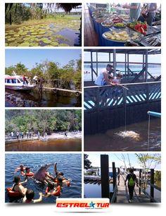 MeuTambaqui.com - Pescando oportunidades