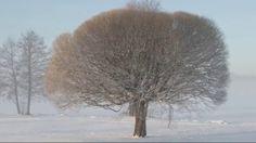 At Christmas God Came on Earth Tapiola Choir Finland Jouluna jumala synt...