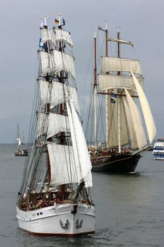 cream and white sails