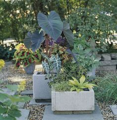 these DIY concrete planters just might be the start of something wonderful for my home's curb appeal!All you need are a few pavers, landscape-block adhesive, and a little time. Wait 24 hours for everything to cure and you're ready to move your new planters into place and fill them with dirt and greenery.
