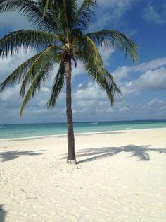 black friday tam cancun